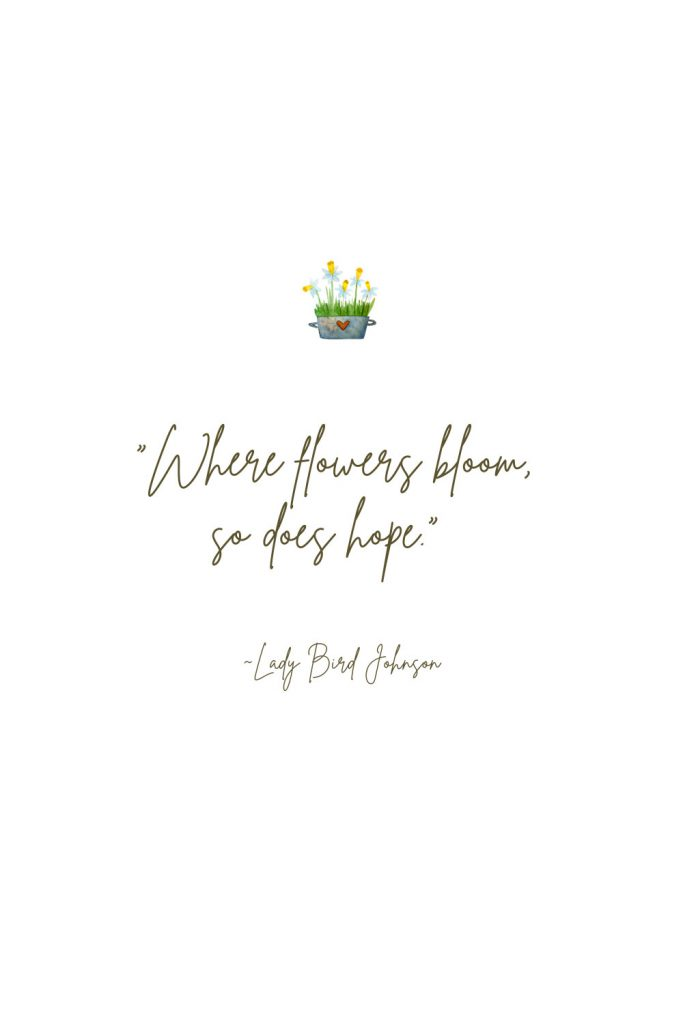 """""""Where flowers bloom, so does hope."""" Lady Bird Johnson Spring Quote"""